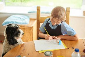 Pet anxiety can cause pet behavior issues when kids go back to school.