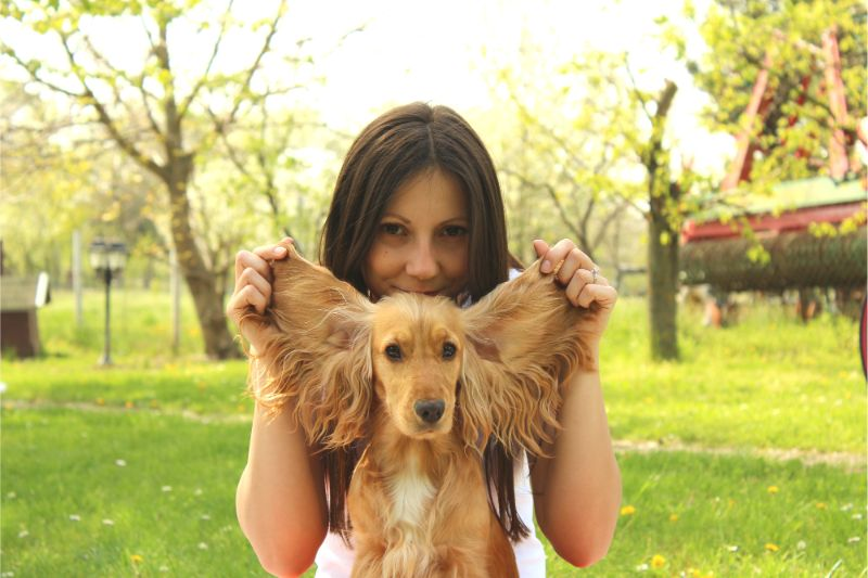 A woman holds up her dog's large ears like angel wings